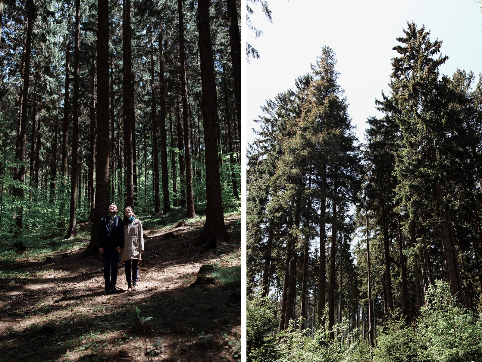 naturalna sesja narzeczenska - zdjecia w lesie
