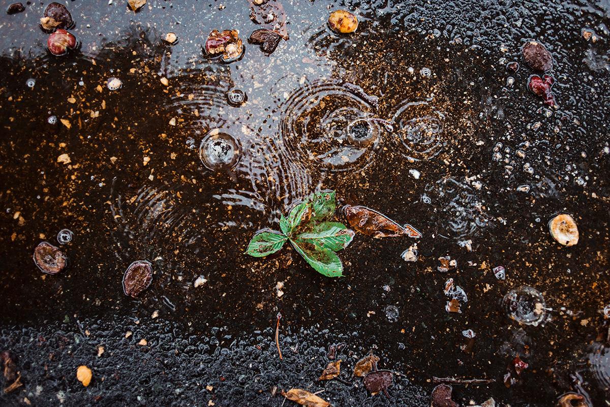 jesienny slub - inspiracje