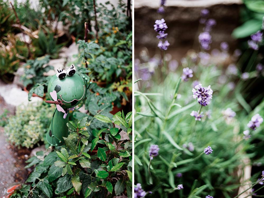 slub z motywem lawendy - naturalna fotografia - mieszko i jagienka