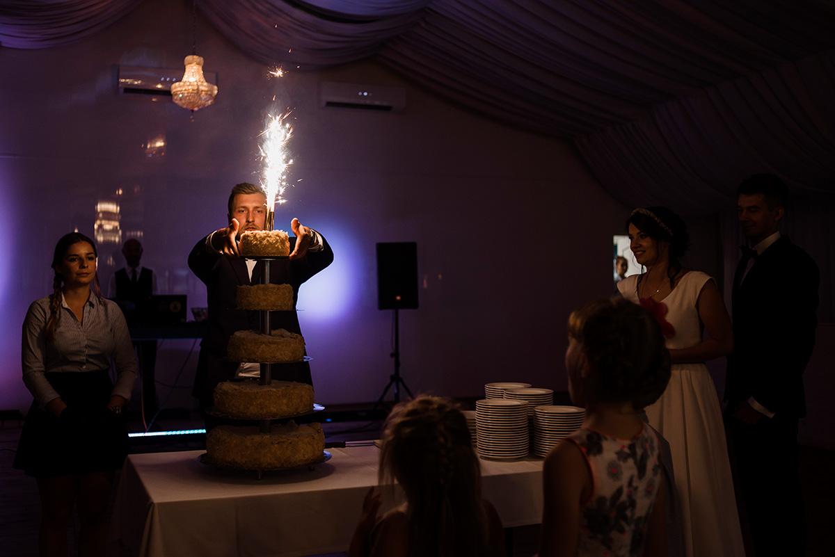 wesele w hotelu wodnik we wroclawiu - tort